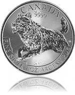 Maple Leaf - Wolf...