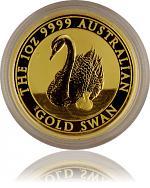 Australien Schwan...