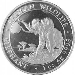Somalia Elefant 1...