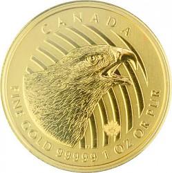 Golden Eagle (Ste...
