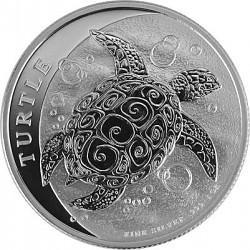 Niue Schildkröte ...