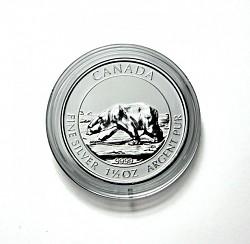 Coin Capsules 38,...