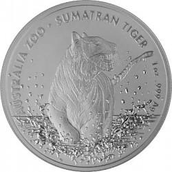 Sumatra Tiger RAM...