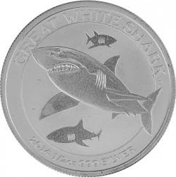 Great White Shark...